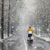 В Московском регионе ожидаются небольшие осадки и до 2 градусов тепла