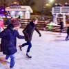 К зиме в Парке Горького обустроят стереокаток