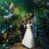 Зоопарк Москвы проведет дни открытых дверей для желающих заключить супружество на его территории
