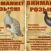 Москвичи смогут организовать фотоохоту на редких птиц и животных