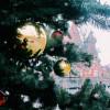 В московском парке «Зарядье» установили новогоднюю ель