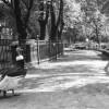 12 февраля 1864 года был открыт московский зоопарк.