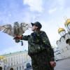 Филин охраняет Кремль от ворон
