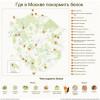 Ранняя осень — прекрасное время для прогулок по столичным паркам. Чтобы был лишний повод выбраться поближе к природе, предлагаем карту мест, где в Москве можно покормить белок.