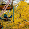 Осень в Останкинском парке. 2009 год.