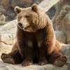 Бурую медведицу и гималайских медведей в Московском зоопарке перевели в уличные вольеры