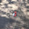 """На тротуарной плитке Чистых прудов появились """"покеболы"""", которые ведут к центру тренировки покемонов возле фонтана."""