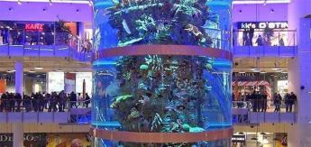 Самый высокий в мире аквариум находится в Москве