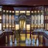 В столичной «Ночи искусств» 4 ноября примут участие около 50 городских библиотек