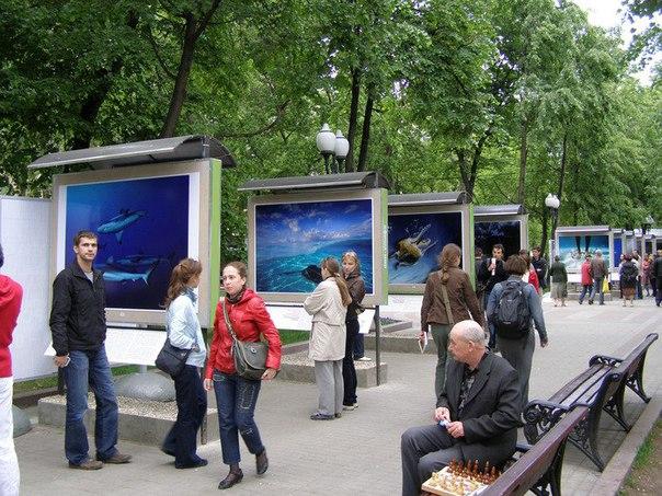 Выставка улицы